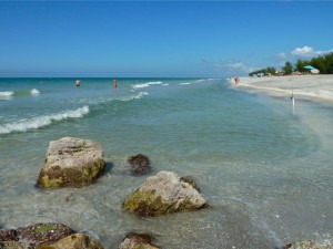 Captiva rocks shells
