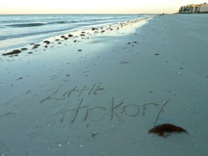 Little Hickory in the sand