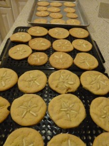 Sand Dollar cookie trays