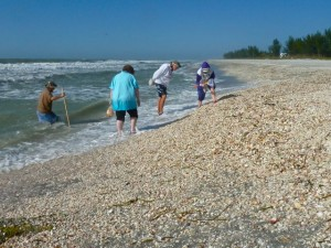 Seashell Collecting at Blind Pass, Captiva