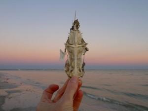 Beach crucifix