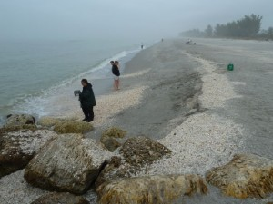 Blind Pass beach Captiva Jan3