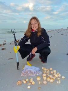 Buttercup shells Alexandra