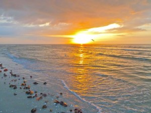 Golden Sanibel Sunrise