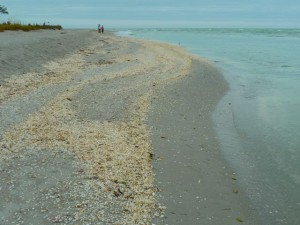 Sanibel's Blind Pass beach