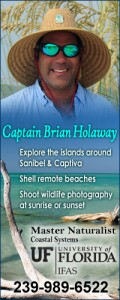Captain Brian Holaway Shelling guide