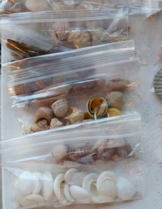 Bags of shells