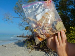 Jen's shell bag