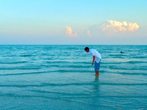 Sanibel shell seeker