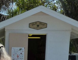 Shell Shed