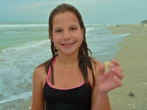 Teenager find seashells