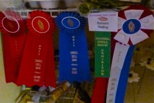 Barb Walling ribbons