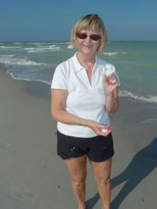 Sanibel shell Muriel