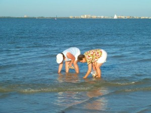 ladies collecting shells