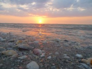 Sanibel Island seashell sunset