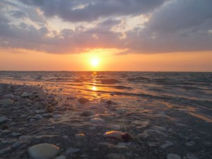 Sanibel sunset shells
