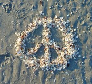 shell peace