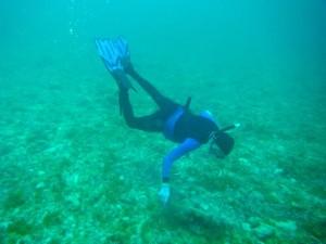 Aqua man MurexKen