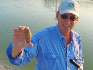 Clark and his junonia