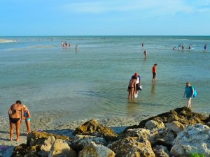 Captiva shell beach