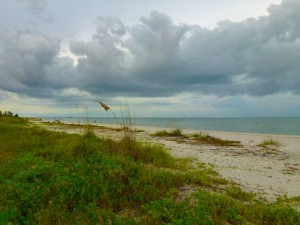 Donax beach access Sanibel