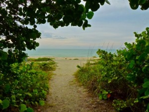Sanibel beach path wg6