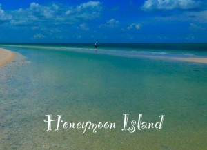 honeymoon island text