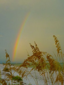 rainbow sea oats