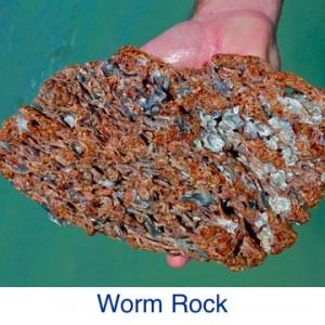 Worm Rock ID