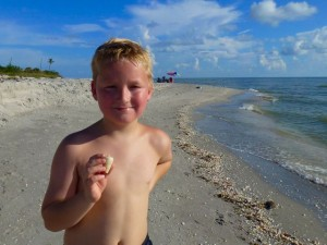 Zenith with cone shell Sanibel