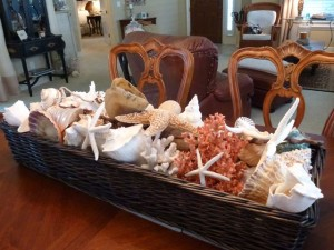 dining shell basket dmm