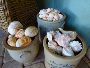 poolside seashell vessels