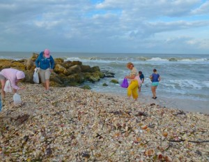 captiva shelling october
