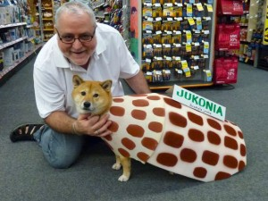 kona junonia dog costume