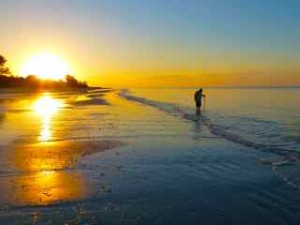 sunrise sanibel sheller with tool