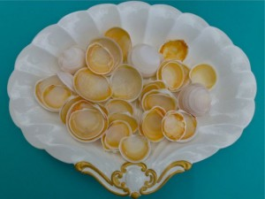 Buttercup seashells on platter