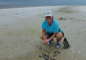 mary ann ross collecting miniature shells