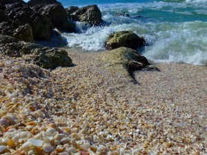 Blind Pass Captiva Shell pile 122911