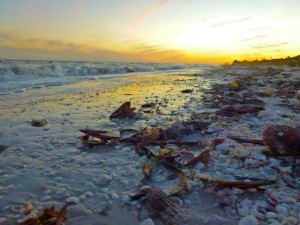 Sanibel Beach Bling at sunset
