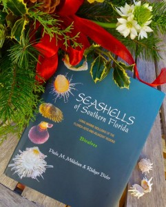 Seashells of Southern Florida book