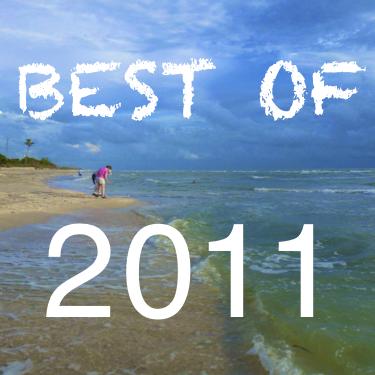 Best-of-2011 beachcombing