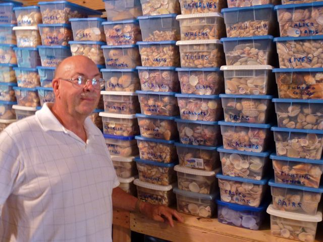 Boxes and Boxes of Sanibel Seashells