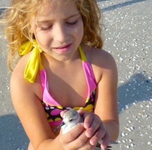 alyssa with hurt sanderling bird