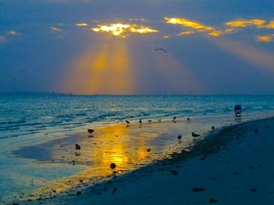 sanibel sunrise reflection