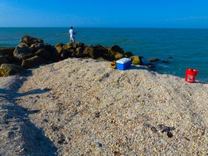 captiva shell mound
