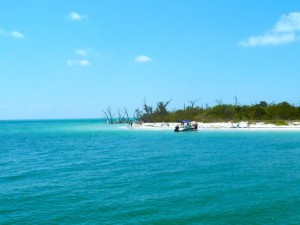 cayo costa south west florida