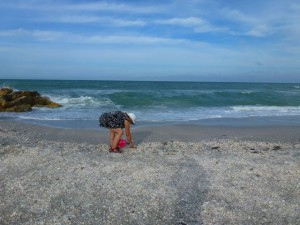 collecting shells captiva