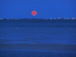 moon over ft myers beach