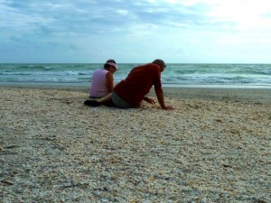 seashell collecting florida