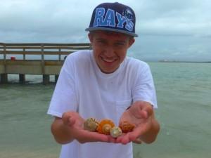jesse seashells cones